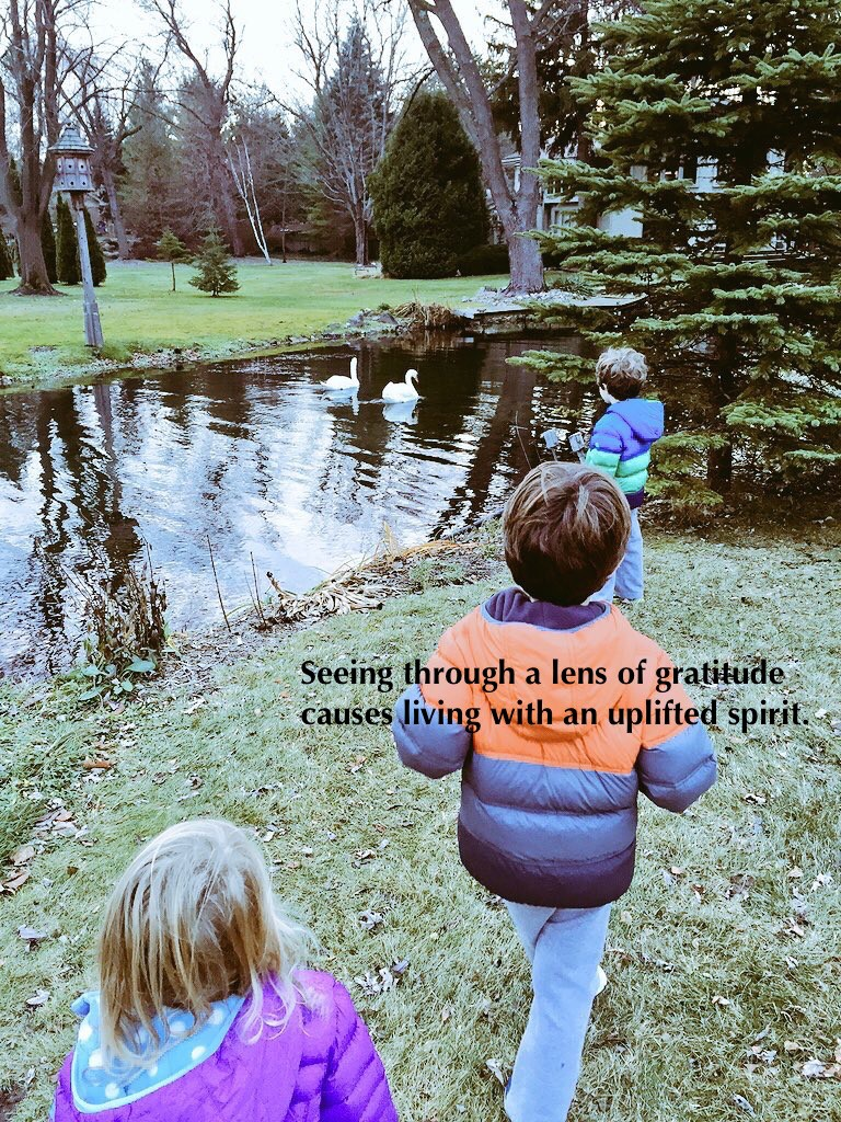 I SEE Gratitude