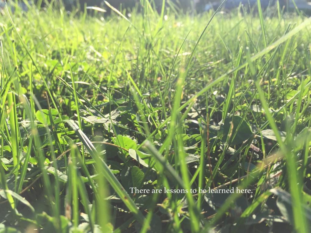 Organic Nature of Nature